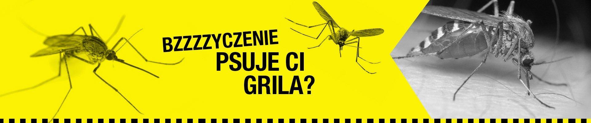 Co zrobić, aby pozbyć się komarów z ogrodu ?